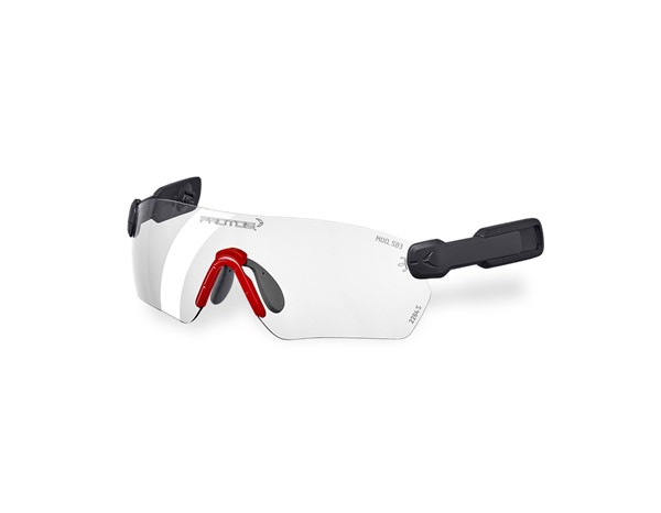 e.s. Zaščitna očala  Protos® Integral